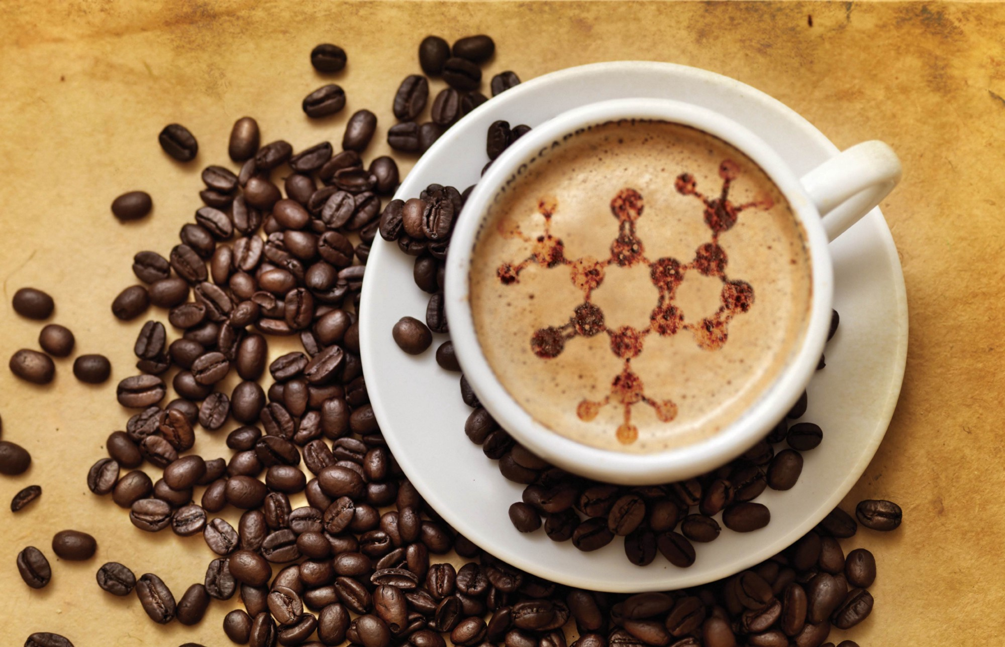 Coffee Equipment Suppliers Is Bound To Make An Impact In Your corporation